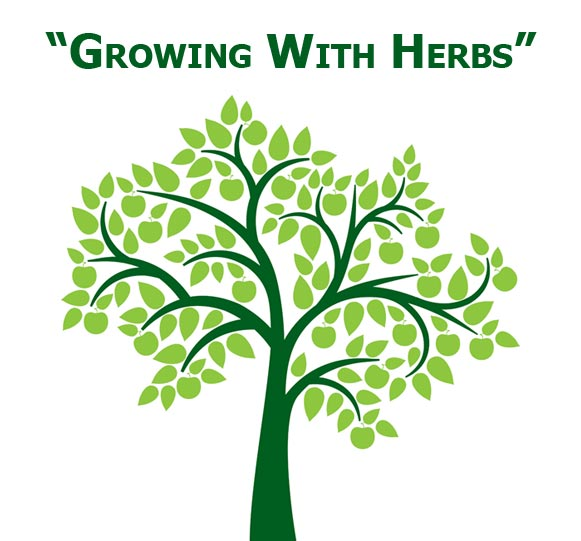 Growing With Herbs Tree