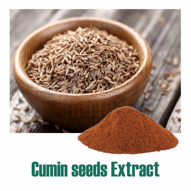Cumin seeds Extract