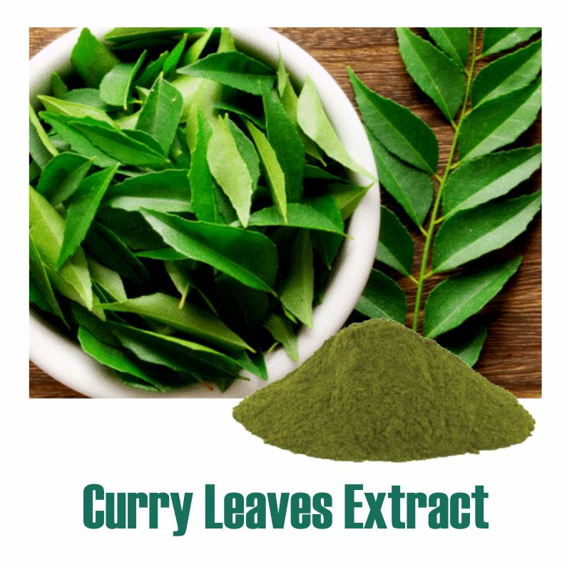Curry Leaves Extract