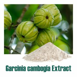 Garcinia Dry Extract