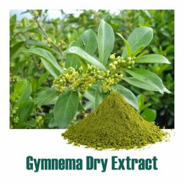 Gymnema Dry Extract