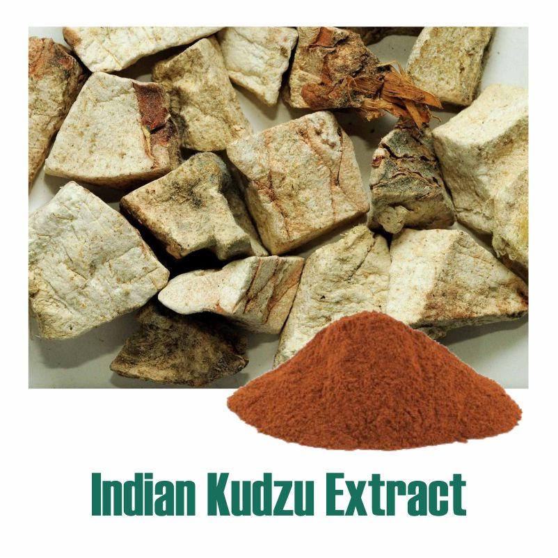 Indian Kudzu Extract
