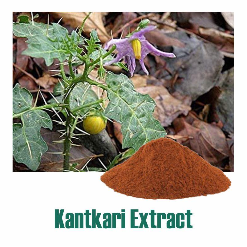 Kantkari Extract