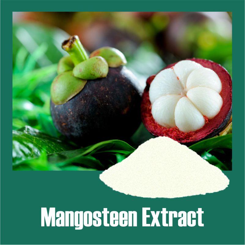 Mangosteen Extract
