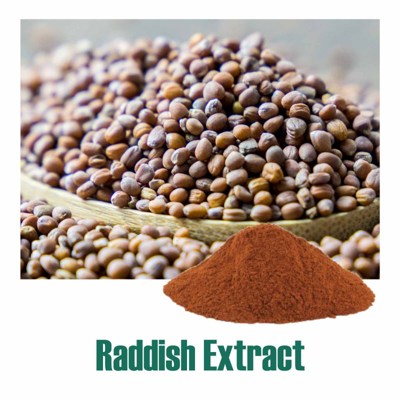 Raddish Extract
