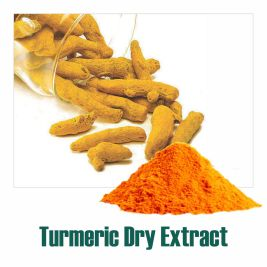 Turmeric Dry Extract