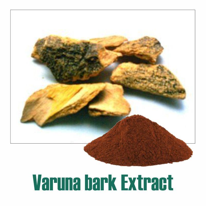 Varuna bark Extract