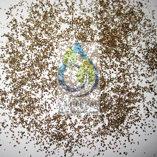 celery-seed