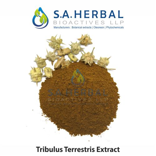 Tribulus Terresteris